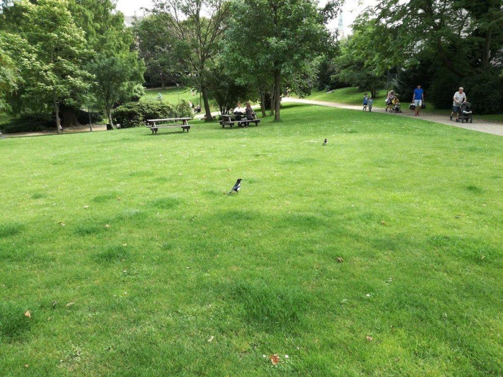 2_Copenhaga_parc
