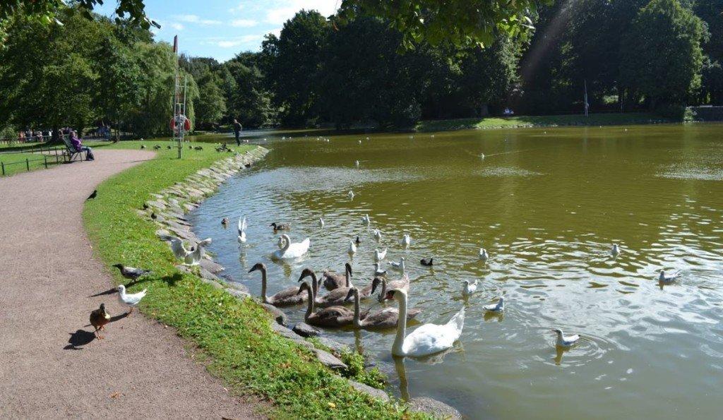 Malmo Park